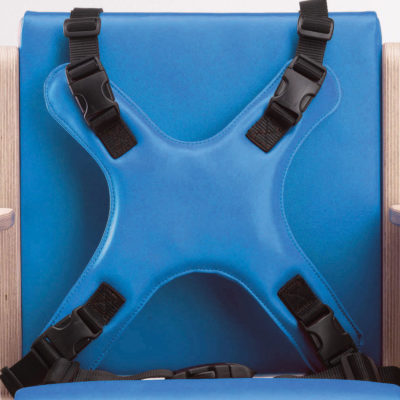 4-point harness