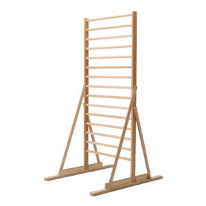 Walking Ladder 300x300 - User Guides & Downloads