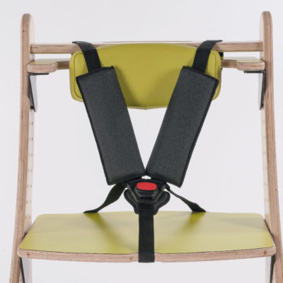 5-point harness